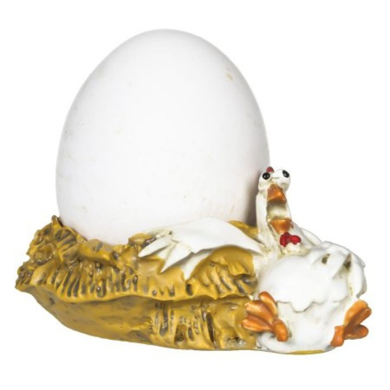 eierdop kip op nest