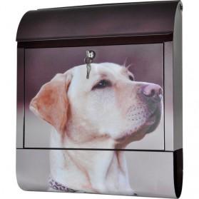 Labrador Retriever op stalen brievenbus